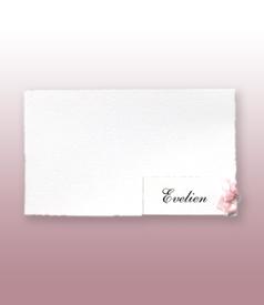Evelien Oud Hollands wit geboortekaartje met los naamkaartje en traditioneel roze strikje voorvertoon