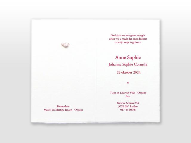 Anne Sophie Oud Hollands wit geboortekaartje met satijn vlinderstrikje binnenzijde