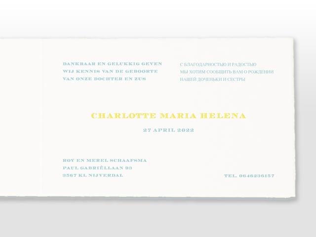 Charlotte Oud Hollands wit geboorte kaartje in 2 pms kleuren en dubbel satijn strikje tekst