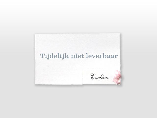 Evelien Oud Hollands wEvelien Oud Hollands wit geboortekaartje met los naamkaartje en traditioneel roze strikje it geboortekaartje met los naamkaartje en satijnen vlinderstrikje
