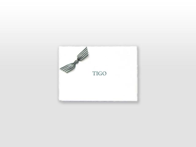 Tigo Oud Hollands wit geboortekaartje katoenen groene ruitjes vlinderstrikje