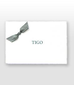 Tigo Oud Hollands wit geboortekaartje katoenen groene ruitjes vlinderstrikje voorvertoon